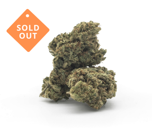 sundae-driver-soldout-thetreecd