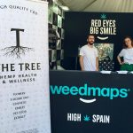 spannabis-the-tree