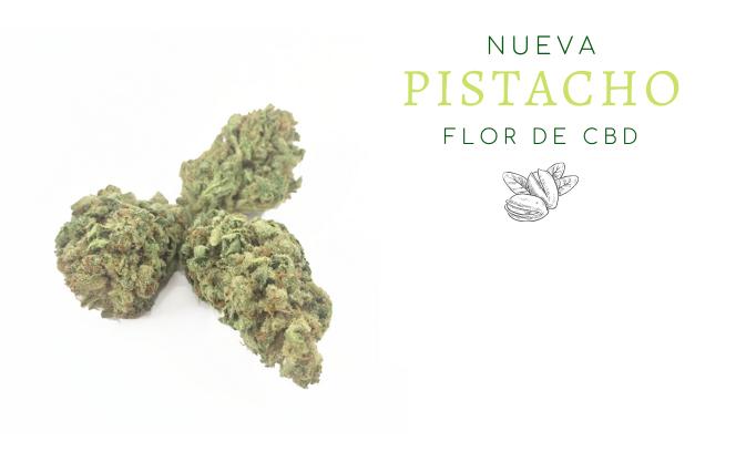 pistacho-flor-de-cbd-banner-home