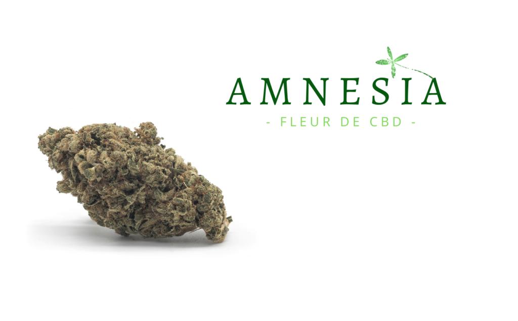 marihuana-amnesia