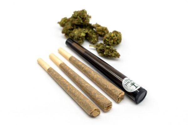 CBD-pre-rolls-buds-pack