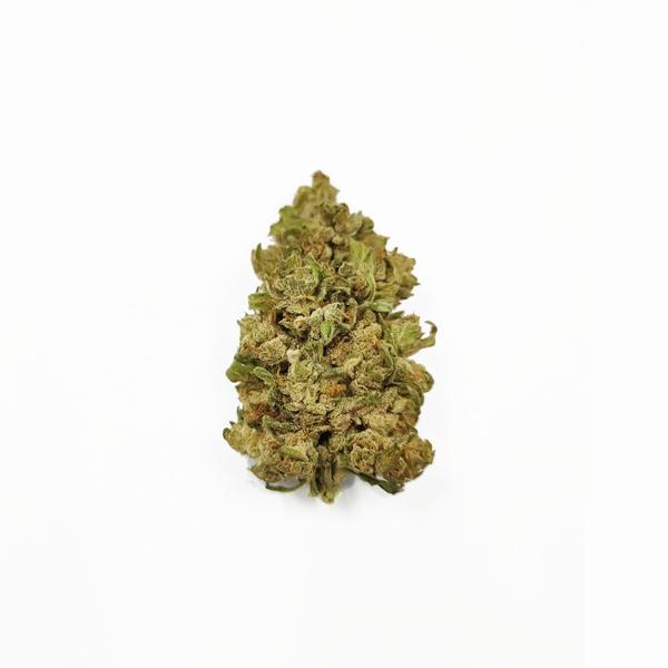 matterhorn-flower-cbg