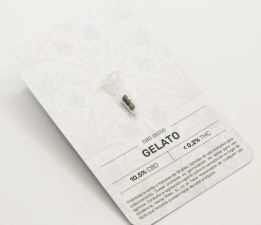 Semillas-gelato-cbd