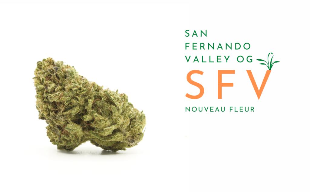 san-fernando-valley-banner-fr