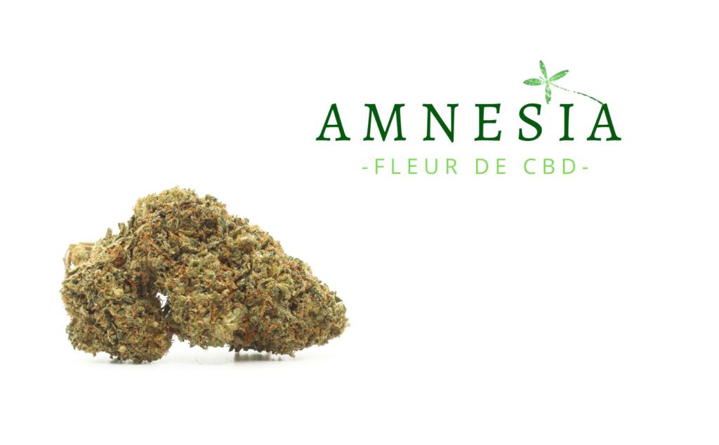 amnesia-fleur-de-cbd